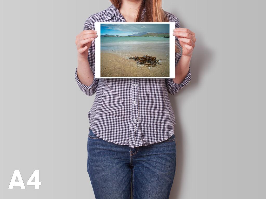 Seaweed A4 horizontal